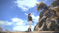 Depending on your chosen class, you should be able to solo B-Rank Elite Marks if you come across them. You may wish to bring your chocobo along for support, though, since they're not easy fights by yourself, even with good gear.