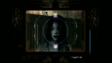 Project Zero 4: Mask of the Lunar Eclipse (Wii)
