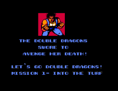 Double Dragon II: The Revenge